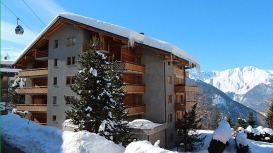verbier-luxury-winter-rental-chalet-apartment-residence-beauvoir-12--77.jpg
